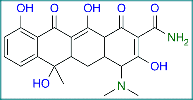 The 4 rings of the basic tetracycline structure.